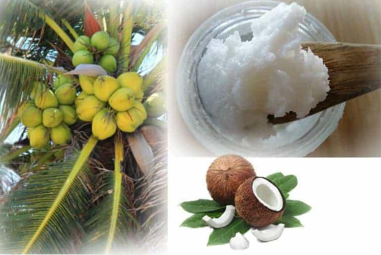 Coconut Blend 2